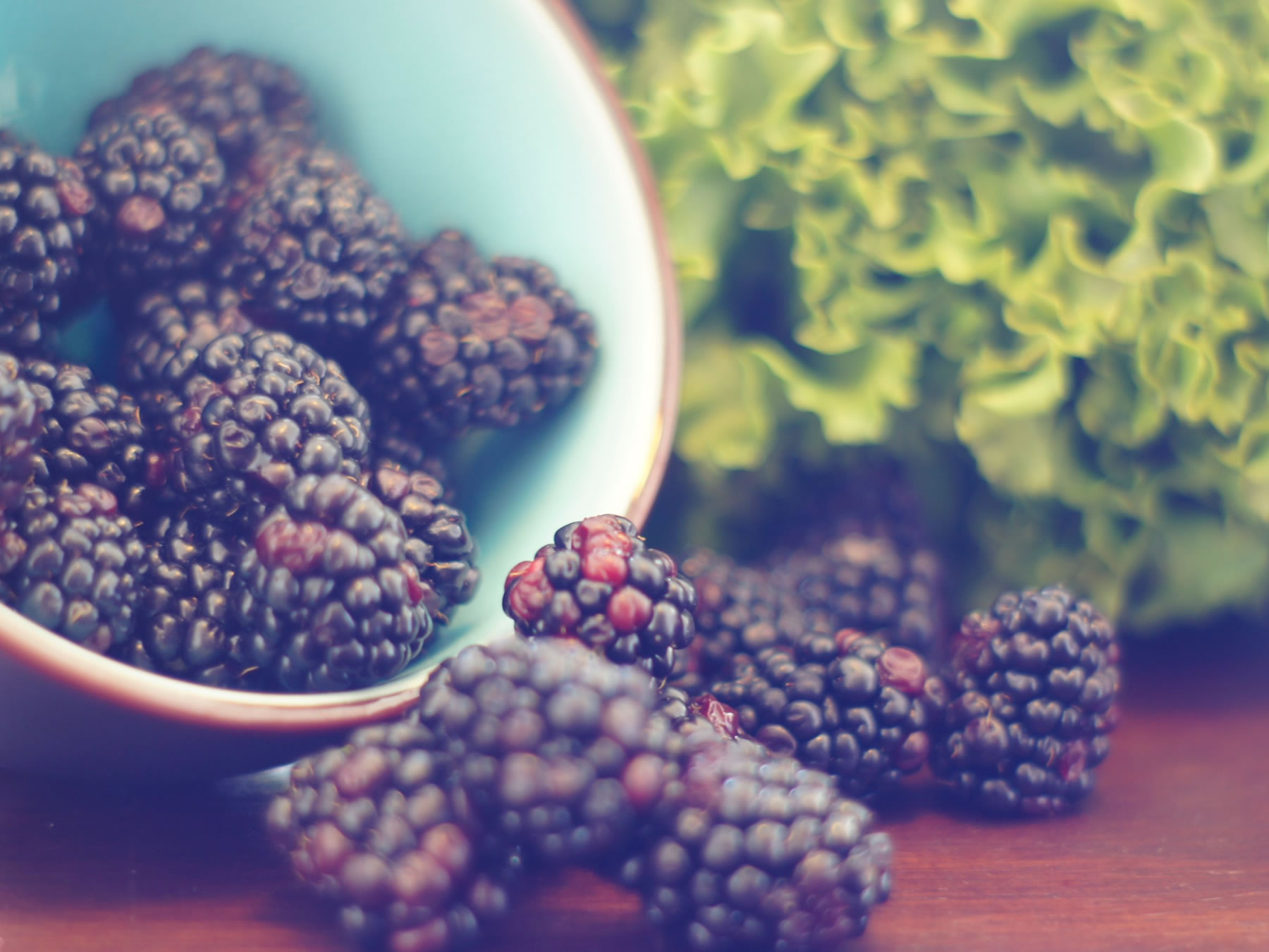 Holistic nutrition from Grove Wellness